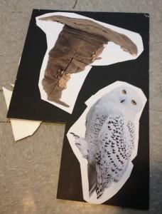 Harry-potter-photo-booth-foam-board-layout1-228x300